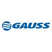 A Gauss iniciou nos anos 1990 como uma remanufatura de reguladores de voltagem. Hoje, a Empresa é especializada em eletrônica veicular, fornecendo um amplo portifólio de peças para injeção eletrônica, ignição, elétrica e arrefecimento, para os mercados de veículos leves, pesados, motocicletas, máquinas agrícolas e de construção. Conta com matriz no Brasil, fabrica na China e central de distribuição na Alemanha e comercializa seus produtos em mais de 60 países.