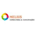 Melius Consultoria e Capacitações